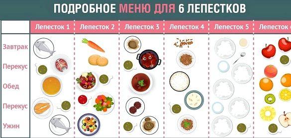 6 лепестков диета меню на каждый день суть лепестковой диеты