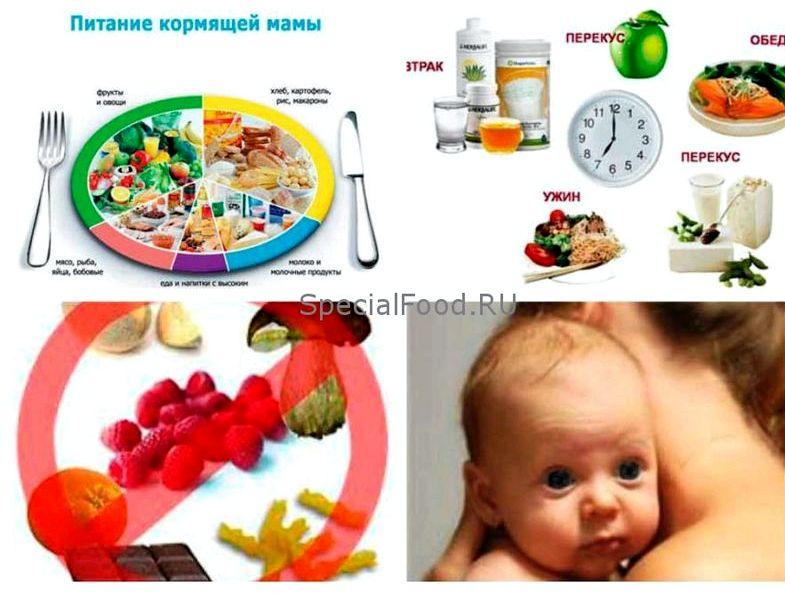 Какие продукты нельзя есть кормящим просто не
