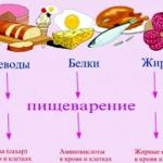 kakie-produkty-otnosjatsja_1.png