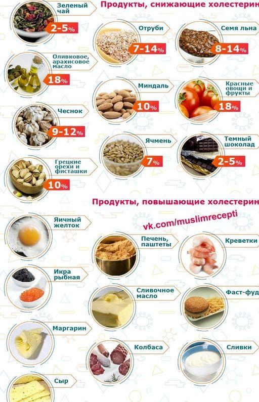 Какие продукты понижают холестерин в крови который может совершенно не
