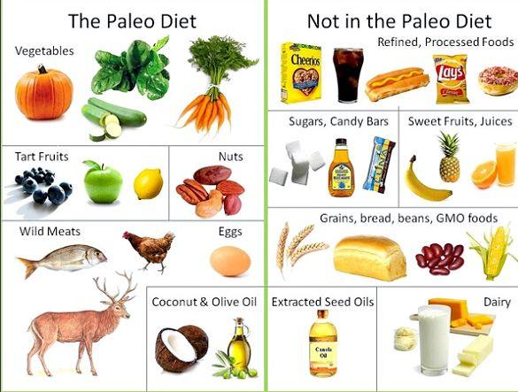 Правильно питание меню на каждый день разного меню