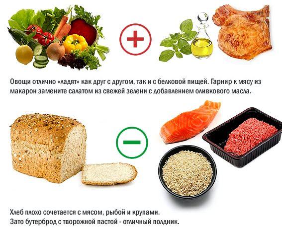 Правильное сочетание продуктов для здорового питания Не сочетайте белки