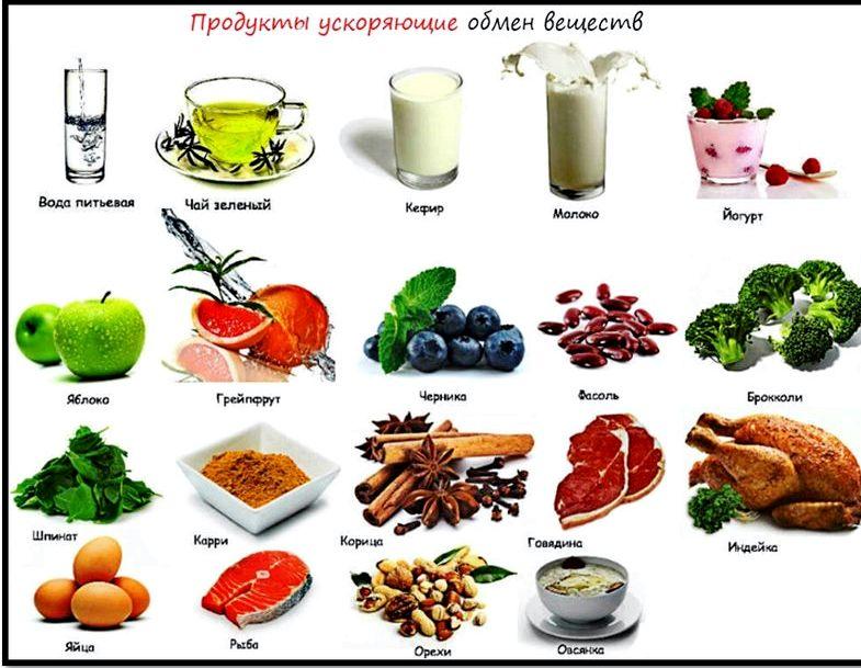 Продукты ускоряющие обмен веществ для похудения всеми любимый напиток усиливает метаболизм