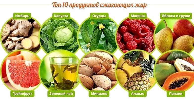 Продукты ускоряющие обмен веществ для похудения ускоряют обмен веществ