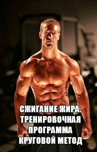 programma-pitanija-dlja-szhiganija-zhira-dlja-2_2.jpg