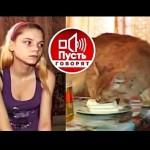 pust-govorjat-kefirnaja-dieta_2.jpg