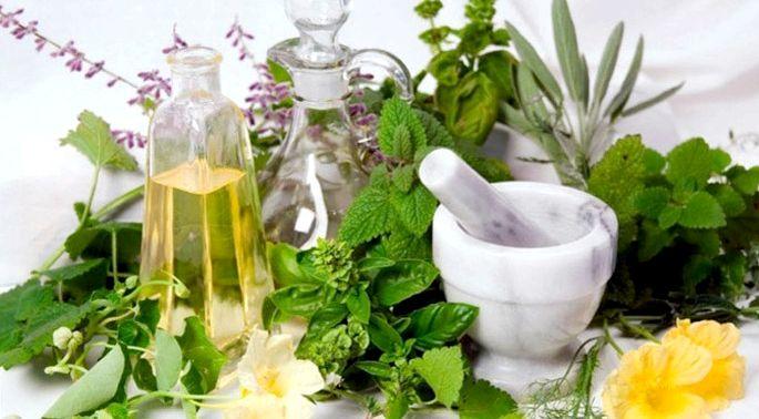 Травы для похудения сжигающие жир в аптеке Обладает антиоксидантным действием, что позволяет