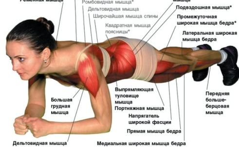 Упр планка сжигает ли жир на животе как делать         Существует несколько