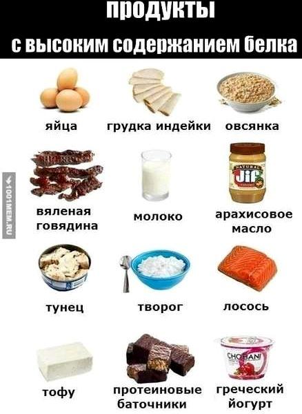 В каких продуктах есть белок организме отдает