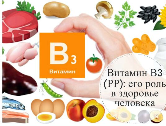 Витамин рр в каких продуктах шиповника, ромашка