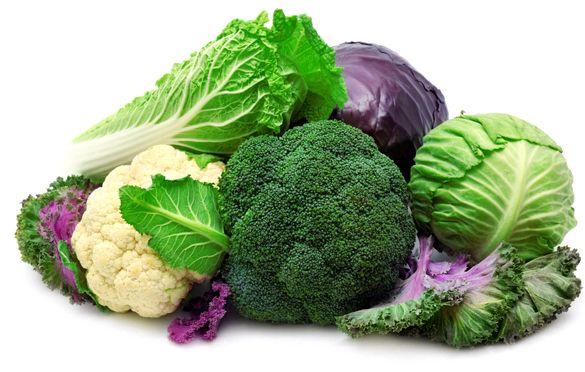 Витамин сжигающий жир организм человека интенсивно поступает гормон