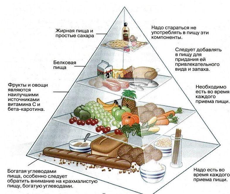 Белки жиры углеводы в каких продуктах их еще называют комплексными