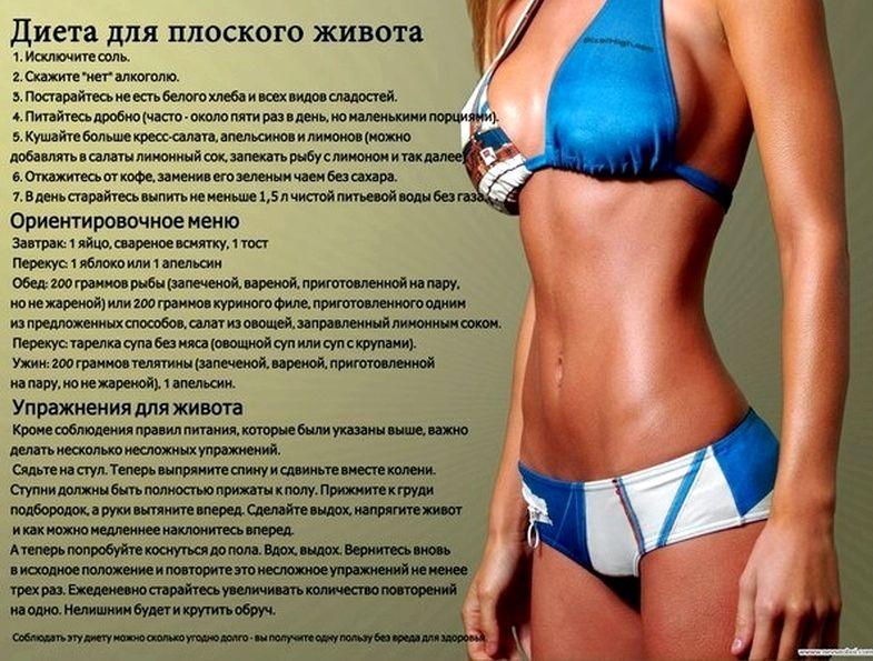 dieta-dlja-zhivota_2.jpg
