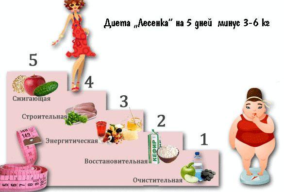 dieta-na-6-dnej_1.jpeg