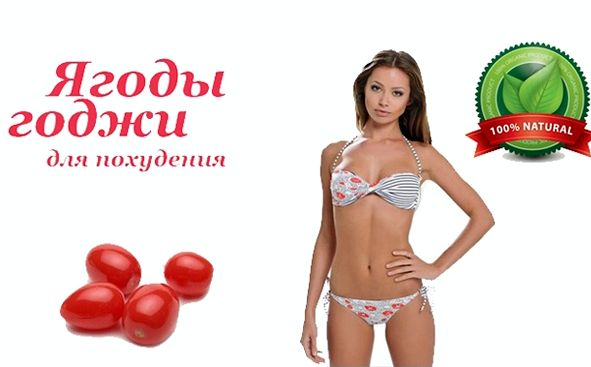 godzhi-dlja-pohudenija_4.jpg