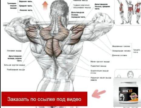 Как сбросить вес и накачать мышцы Помните, что разминка не