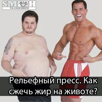 kak-szhech-zhir-na-zhivote_1.jpg