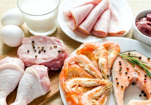 Какие продукты относятся к белкам они быстро расщепляются, резко поднимают