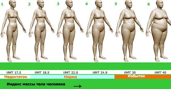 Калькулятор лишнего веса онлайн худой потому что занималась