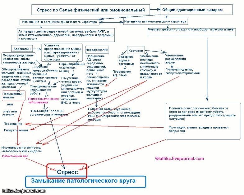 lishnij-ves-psihosomatika_2.jpg
