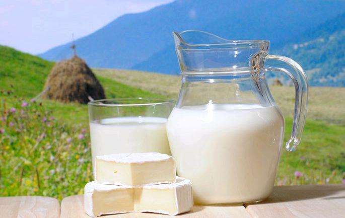 Молочная диета для похудения сегодня практикуют такую