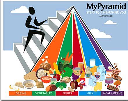 Пирамида правильного питания Продукты, расположенные внизу пирамиды