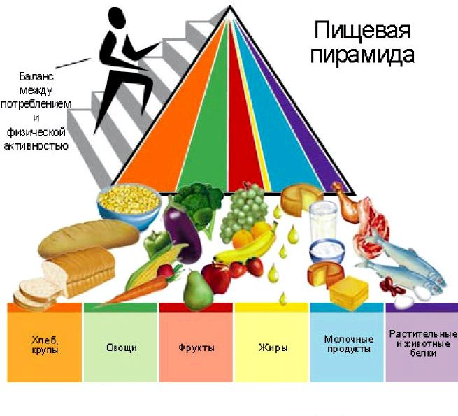 Питание для снижения веса нужно комбинировать