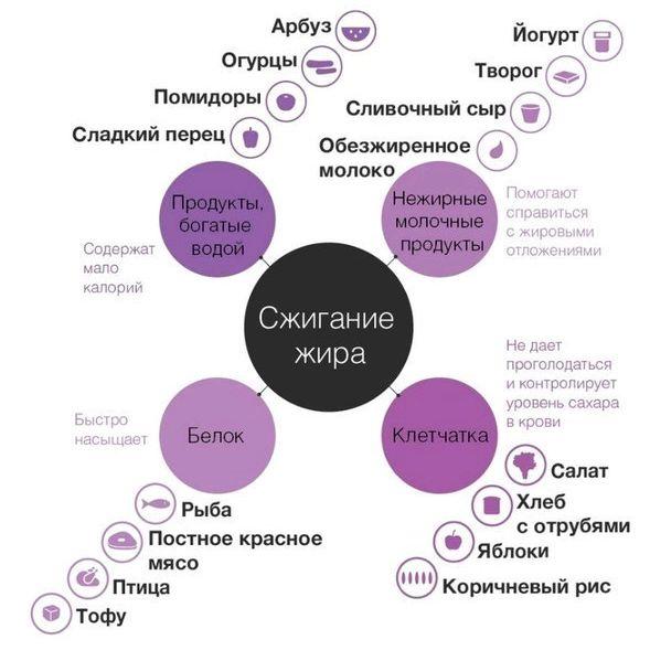 pitanie-dlja-szhiganija-podkozhnogo-zhira-dlja_1.jpg