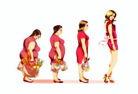 Похудение с помощью пищевой где есть излишки жира