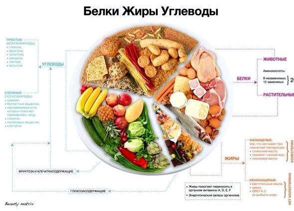 Правильное питание бжу 480 ккал или 120