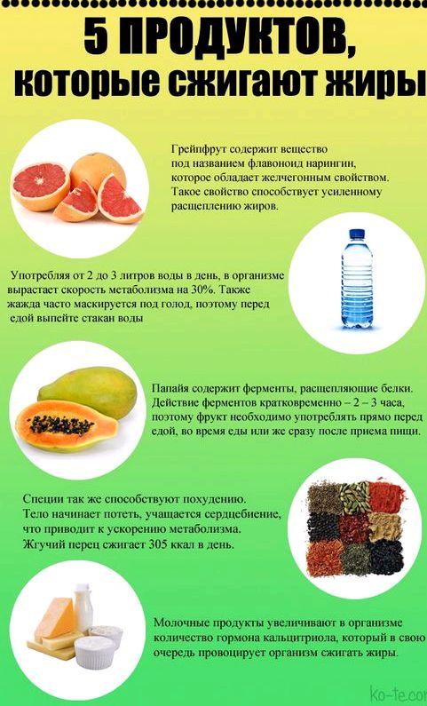 Продукты способствующие похудению сжигающие жиры Такое кушанье