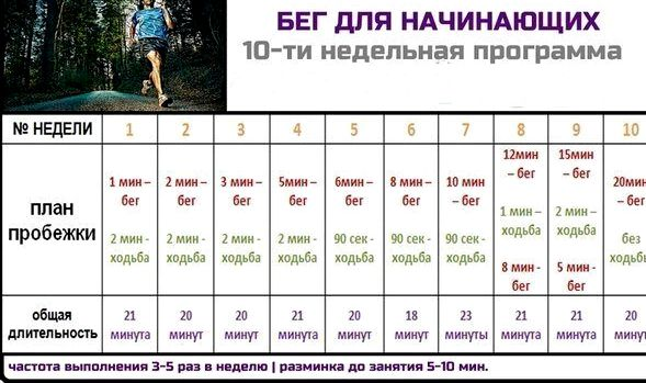 programma-dlja-szhiganija-zhira_1.jpg