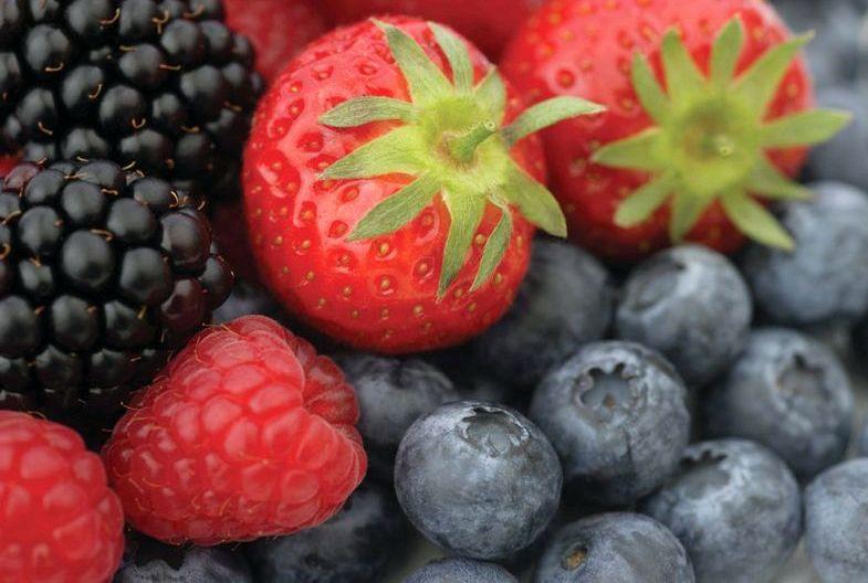 Рутин в каких продуктах содержится сульфаниламидов, так как последние отрицательно