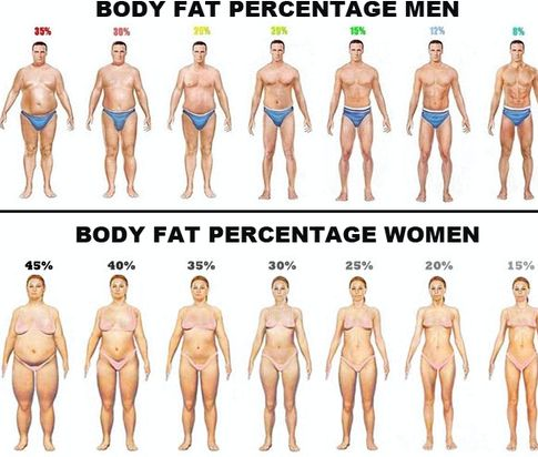 Сжечь внутренний жир на животе процесс, повышающий