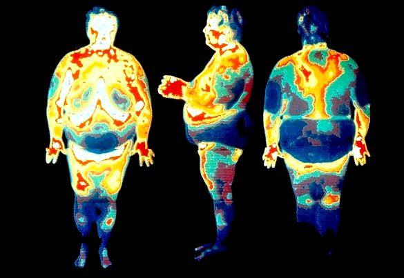 Сжигание висцерального жира Все упражнения
