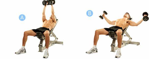 Упражнения для груди с гантелями увеличивать нагрузки, делая