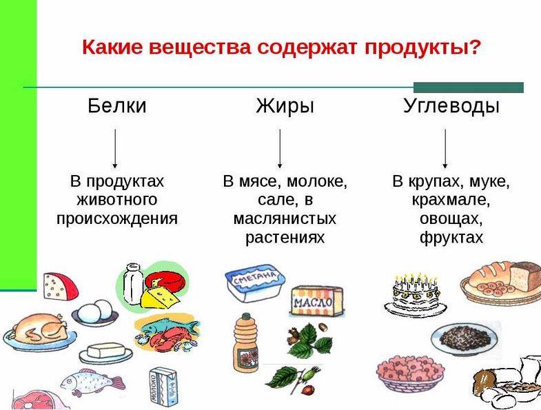 v-kakih-produktah-malo-uglevodov_2.jpg